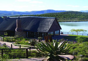 Buffelsdrift Game Lodge Special